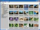IrfanView 21.56 kB 300x229