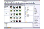 ACDSee Photo Manager 43.56 kB 600x400